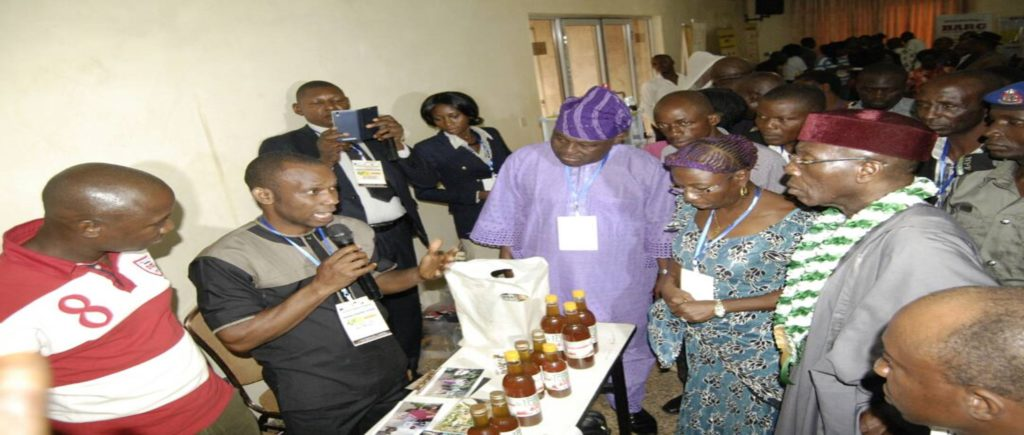 bee keeping training and honey making in Nigeria